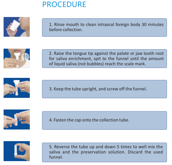 Procedure of saliva collection